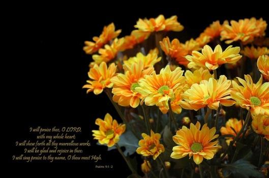 68df21b811e1a723a35481afe2dd41b8 i will praise thee