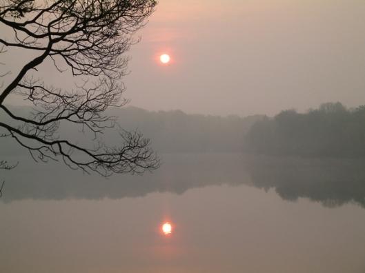 cathy-marshall-two-sun-morning